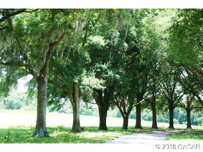 Gainesville Residential Lots & Land For Sale: 4703 NW 95th Boulevard