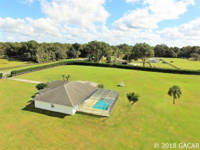 Ocala Single Family Home For Sale: 650 NE 95TH