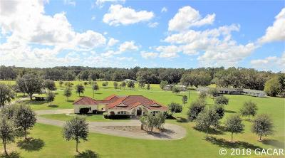 Ocala FL Single Family Home For Sale: $1,999,999