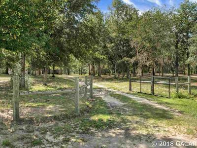 Williston FL Single Family Home For Sale: $265,000