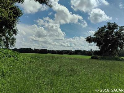 Alachua Residential Lots & Land For Sale: 8311 NW 170TH Street