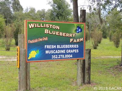 Williston FL Single Family Home For Sale: $195,000