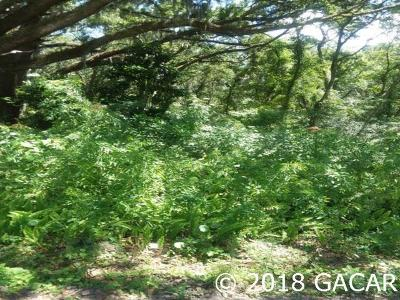 Micanopy Residential Lots & Land For Sale: SW 5th Street