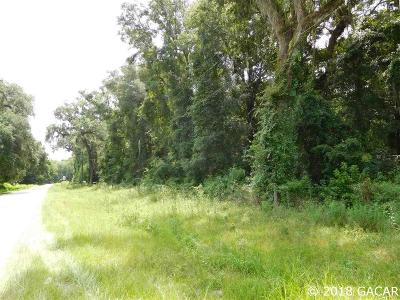 Micanopy Residential Lots & Land For Sale: 07411-002-000 Williston Road