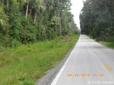 Micanopy Residential Lots & Land For Sale: 110 SE Wachotta Road
