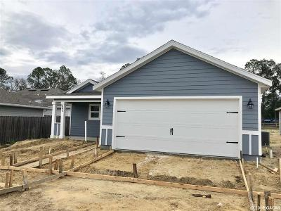 Newberry Single Family Home For Sale: 587 SW 251st Street