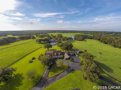 Micanopy FL Single Family Home For Sale: $1,250,000