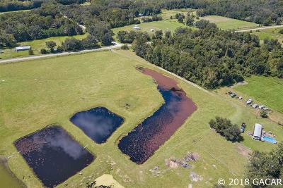 Alachua Single Family Home For Sale: 19815 NW County Road 239