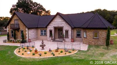 High Springs Single Family Home For Sale: 22510 NW 188th Street