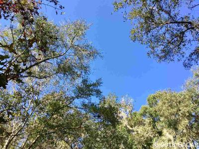 Micanopy Residential Lots & Land For Sale: 110 NE Evans Court