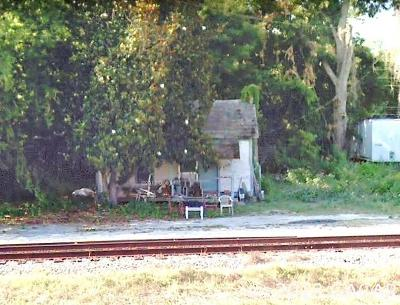 Alachua Single Family Home For Sale: 14009 Peggy Road