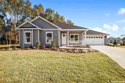 Alachua Single Family Home For Sale: 16877 NW 168th Terrace