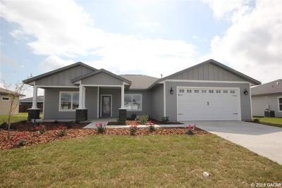 Newberry Single Family Home For Sale: 23131 NW 5th Place