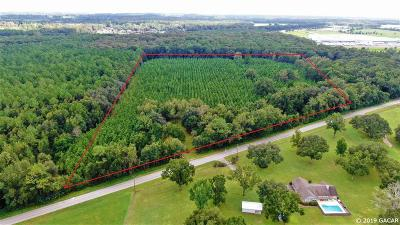 Alachua Residential Lots & Land For Sale: 16131 Peggy Road