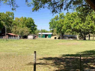 Alachua Single Family Home For Sale: 22928 NW 102nd Avenue