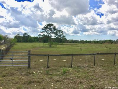 Residential Lots & Land Pending: TBD E Levy Street