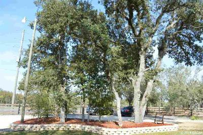 Williston Single Family Home For Sale: 11650 NE Hwy 27 Alt