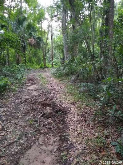 Micanopy Residential Lots & Land For Sale: 7005 SE 169th Avenue