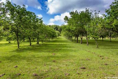 Alachua Residential Lots & Land For Sale: NW 94th Avenue