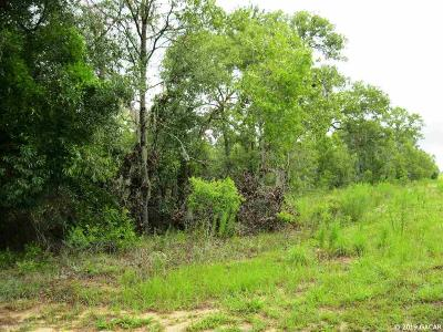Williston Residential Lots & Land For Sale: Lot #4 NE 150 Court