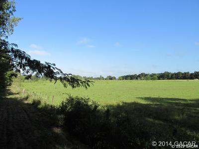 Newberry Residential Lots & Land For Sale: SE 90th St