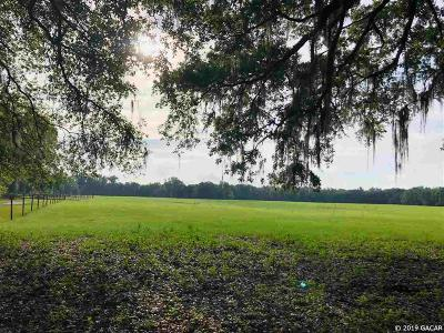 Alachua Residential Lots & Land For Sale: 16615 NW US HWY 441
