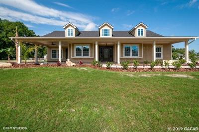 High Springs Single Family Home For Sale: 25617 NW 171 Street