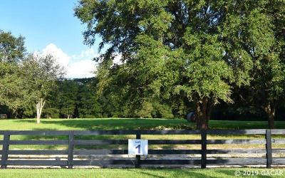 Newberry Residential Lots & Land For Sale: 15502 NW 32 Avenue #Lot 1