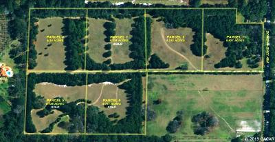 Newberry Residential Lots & Land For Sale: 15502 NW 32 Avenue #Lot 4
