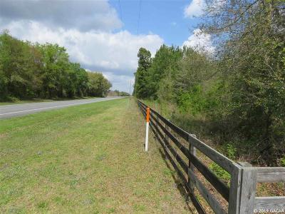 High Springs Residential Lots & Land For Sale: NE SR 47