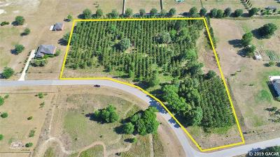 Gainesville Residential Lots & Land For Sale: 10353 SW 98TH Avenue #Lot 11