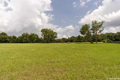 Alachua Residential Lots & Land For Sale: 12675 NW 148TH Terrace
