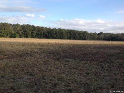 Newberry Residential Lots & Land For Sale: 9118 SW 170 Street