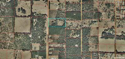 Williston Residential Lots & Land For Sale: NE 150th Avenue