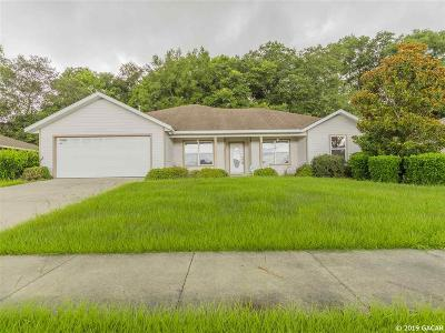 Newberry Single Family Home For Sale: 406 NW 233RD Terrace