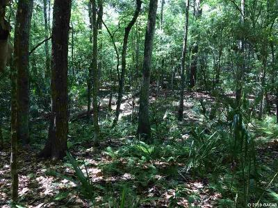 Micanopy Residential Lots & Land For Sale: NW 87th Avenue Road