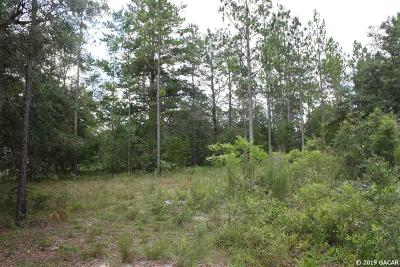 Melrose Residential Lots & Land For Sale: 141 Shiloh Road