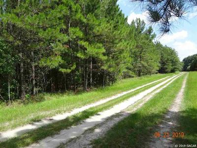 Alachua Residential Lots & Land For Sale: NW County Road 239