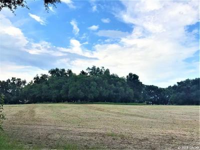 Newberry Residential Lots & Land For Sale: SW State Road 45