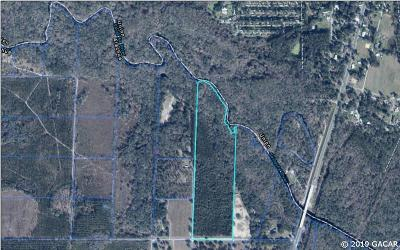 Alachua Residential Lots & Land For Sale: TBD NW 290th Avenue
