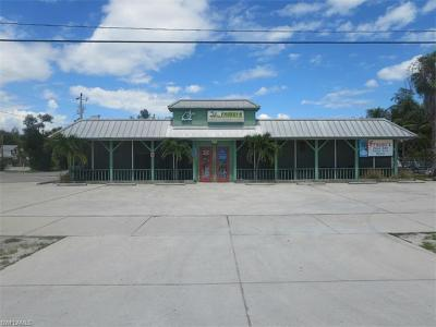 Bokeelia, Pineland, Saint James City, St. James City Commercial For Sale: 3620 Stringfellow Rd