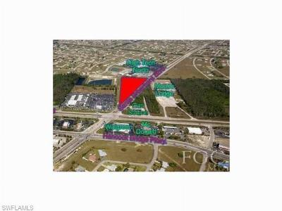 Cape Coral Commercial For Sale: 150 N Santa Barbara Blvd