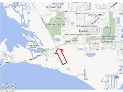 Fort Myers FL Residential Lots & Land For Sale: $295,000