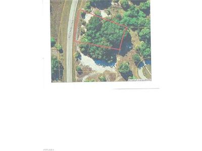 Moore Haven Residential Lots & Land For Sale: 1187 Palomino Dr