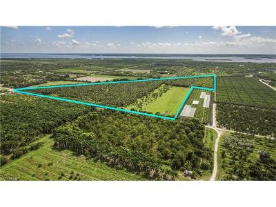Bokeelia, Pineland, Saint James City, St. James City Residential Lots & Land For Sale: 13451 Stringfellow Rd