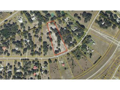 Glades County Residential Lots & Land For Sale