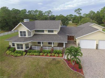 North Fort Myers Single Family Home For Sale: 18671 Lynn Rd