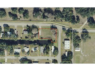 Commercial Lots & Land For Sale: 12575 Williams Rd
