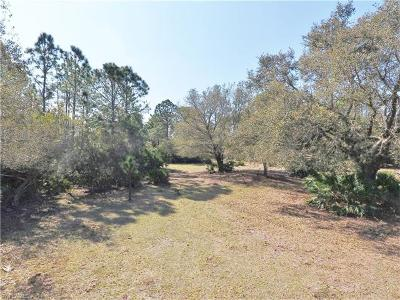 Glades County Residential Lots & Land For Sale: 1513 & 1719 Galloway Ave