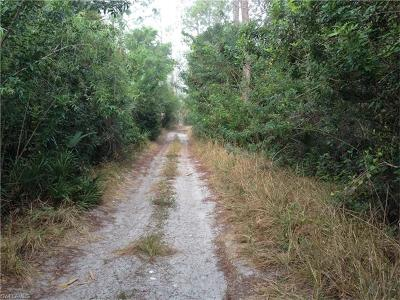 Bonita Springs Residential Lots & Land For Sale: 14301 E Terry St
